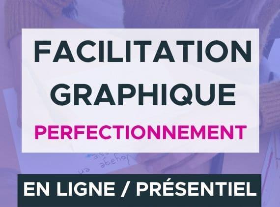 Formation facilitation graphique perfectionnement