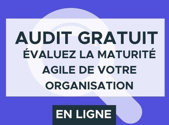 audit agile